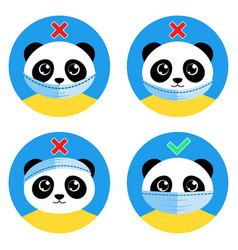cute panda bear shows how to wear mask properly vector image