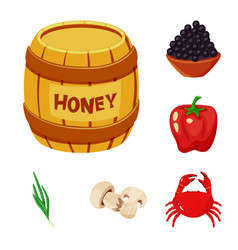 design of food and flavors icon collection vector image