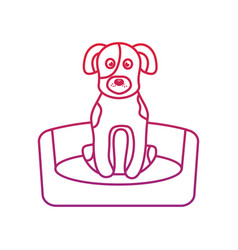 Dog or puppy on bed pet icon image bird tropica vector