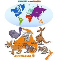 Educational with cartoon australian animals vector