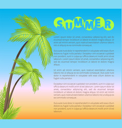 summer poster with palms vector image