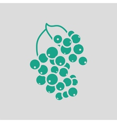 Black currant icon vector