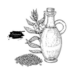 bottle of sesame oil with plant hand drawn vector image
