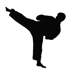 Karate master silhouette vector
