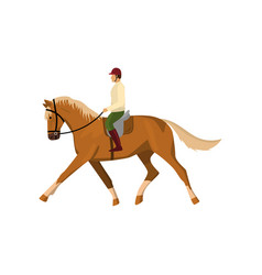 man riding brown jogging horse isolated against vector image