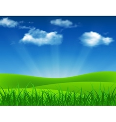 Nature summer background with green grass vector
