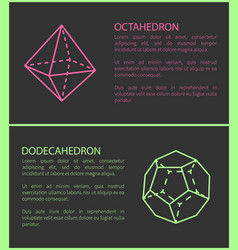 octahedron and dodecahedron vector image