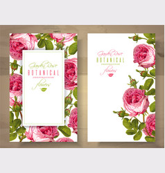 Rose vertical banners vector