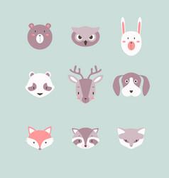 Set of fox raccoon dog and owl cute vector