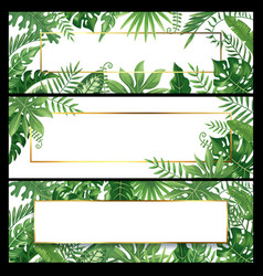 Tropical leaves banners exotic palm leaf banner vector