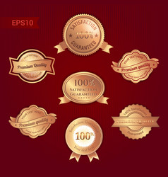 set of satisfaction guarantee and premium quality vector image vector image