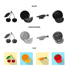 isolated object of vegetable and fruit sign set vector image
