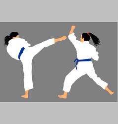 Karate woman fighters in kimono self defense skill vector