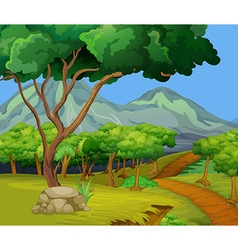 Scene with hiking track in the woods vector image