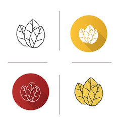 tobacco leaves icon vector image