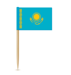 flag of kazakhstan flag toothpick 10eps vector image vector image