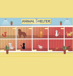 animal shelter concept lonely animals in cages vector image