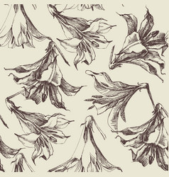 floral pattern graphic lilies vector image