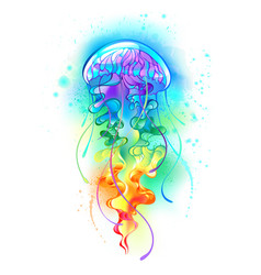 Large rainbow jellyfish vector