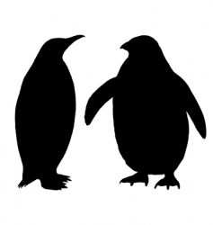 penguin silhouette vector image