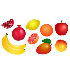 set of of yellow-red fruits vector image