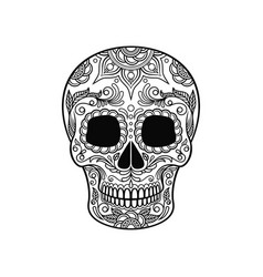 Sugar skull with floral pattern dia de muertos vector