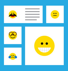 Flat icon expression set of displeased grin cold vector