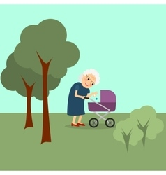 Grandmother with baby stroller vector image