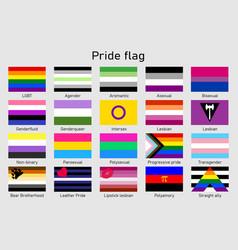 Lgbt community pride flag set sexual identity vector