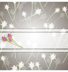 roses and white ribbon vector image