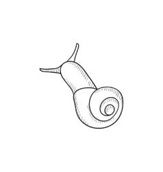 Snail sketch icon vector image