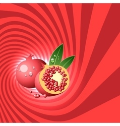 Striped spiral pomegranate confectioners vector