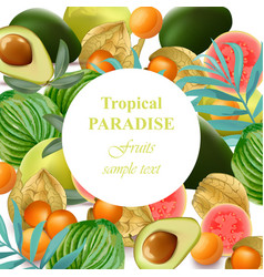 Tropical paradise fruits avocado papaya vector