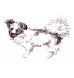 sketched Puppy dog hand drawn vector image vector image