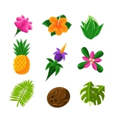 Tropical Exotic Fruits And Flora Set Of Icons vector image vector image