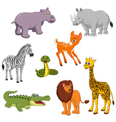 cartoon wild animals on white background vector image