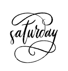 Letteting saturday word hand drawn calligraphy vector