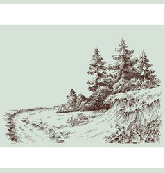 Nature drawing a path in pine forest vector