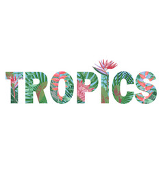 Tropics t-shirt print with exotic flowers vector