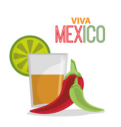viva mexico greeting tequila celebration vector image