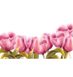 watercolor tulips vintage exotic floral vector image