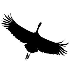crane bird vector image