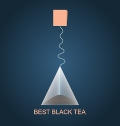 Isolated pyramid of black tea with label vector image vector image
