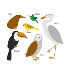 Cute cartoon bird set isolated on white background vector image