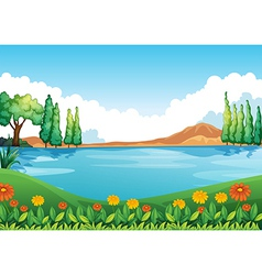 A beautiful pic nature vector