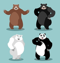 bears set Breed Grizzly and panda American black vector image