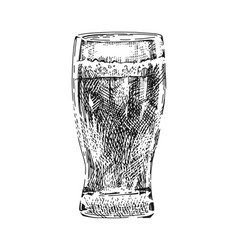 Beer glass real vector