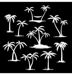 Coconut tree silhouette icons vector image