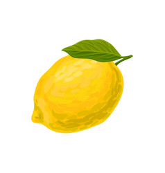 colorful icon of juicy lemon with green leaf vector image