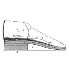 dress shoe are made leather vintage engraving vector image